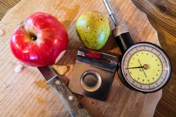 das Obst-Penetrometer hilft dabei, den Reifegrad der Äpfel zu bestimmen