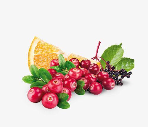 Cranberrypunsch